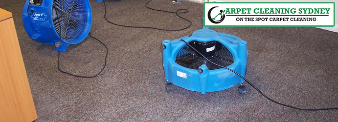 Carpet Flood Damage Restoration Bangor