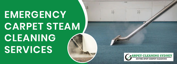 Emergency Carpet Steam Cleaning