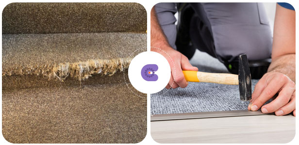 Expert Carpet Repair Services